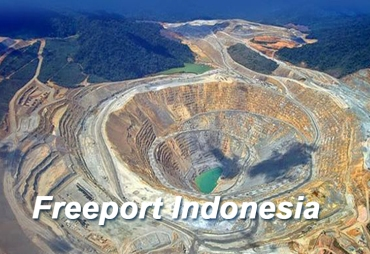 Freeport Indonesia. (Net)